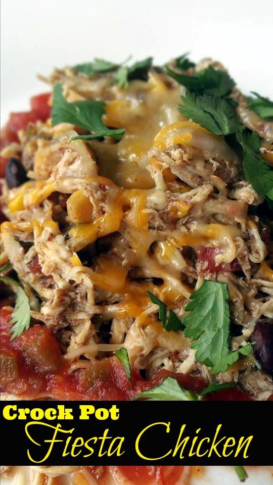 Crock Pot Fiesta Chicken | Aunt Bee's Recipes