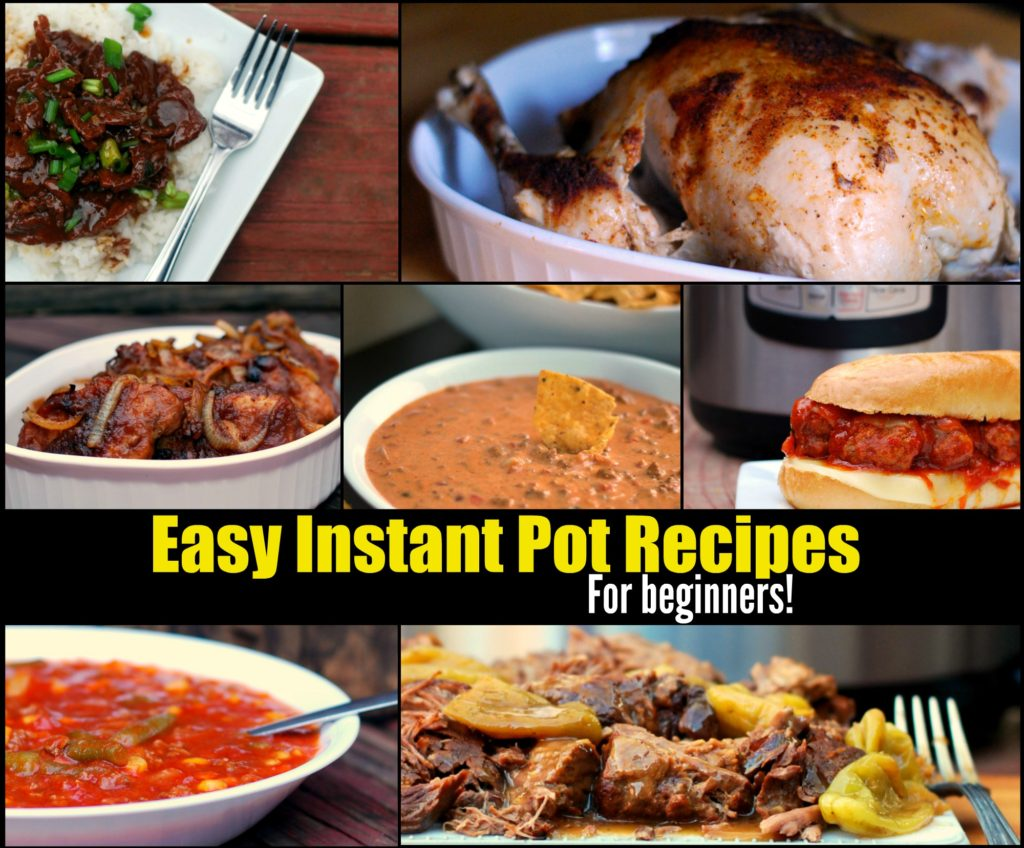 Easy Instant Pot Recipes For Beginners!