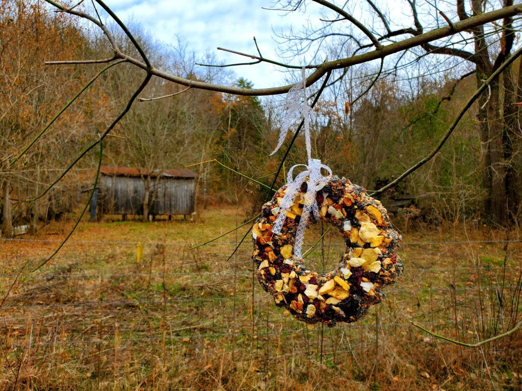 DIY BIrd Seed Wreath